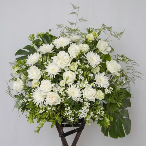 - 白玫瑰爪菊花籃